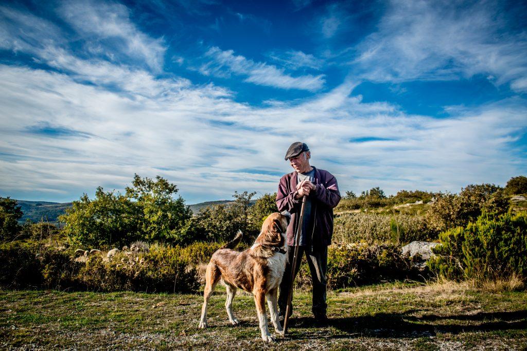 Paisagem de arbustos baixos, com céu e algumas nuvens, na Serra do Larouco. Ao centro está um pastor com o seu cão de grande porte.